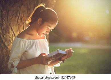 Asian girl reading book at park in summer sunset light.