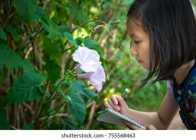 Asian girl studying and learning nature