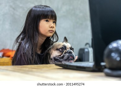 Asian girl studying online at home with her best friend dog.