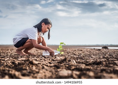 Asian girl watering green plant in dry land,Crack dried soil in drought and ,Climate change from global warming. - Shutterstock ID 1494106955