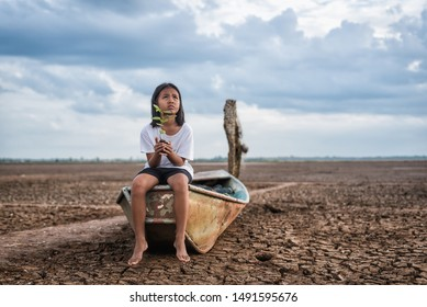Asian girls holding green  plant trees on boat in arid lands  ,drought condition due to climate change.Tree planting and environmental development campaign