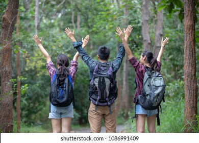 c2676d3ab6 Asian Group of young people Hiking with friends backpacks walking together  and looking map and taking