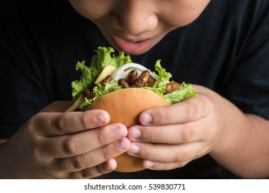 Asian happy boy eating hamburger. Burger made of fried insect meat and full face with Spices, Vegetables, Lettuce, tomato, Cheese, Fried chicken. Closeup, Select focus.