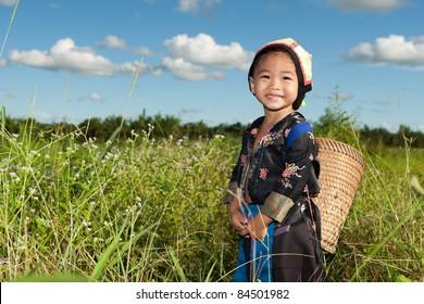 asian hmong girl on rice paddy