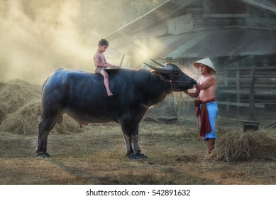 Asian kids playing in a notebook on a buffalo.