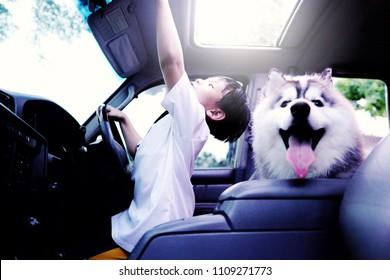 Asian little boy open the car sunroof with beautiful dog breed Siberian husky and nature background.Smiling and Happiness of cute kid in the summer.Holiday,Vacation,Family,Travel Concept.