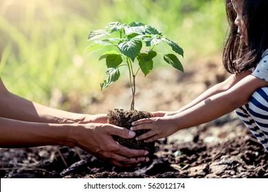 Cô gái nhỏ châu Á giúp cha cô trồng cây non trong vườn như lưu khái niệm thế giới