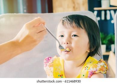 asian little girl having lunch food
