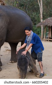 Asian man and baby elephant