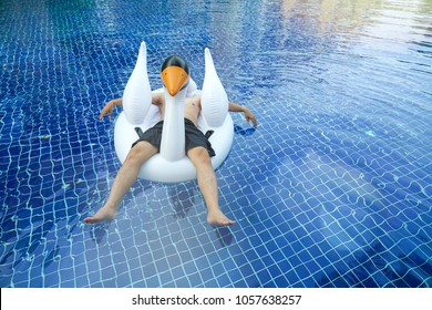 An asian man floating on blue pool by inflatable with toy rubber swan. Relax and chill concept idea for summer fun usage.