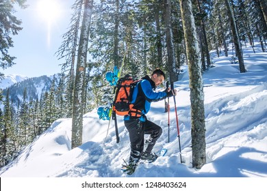 Asian man snowboarder freeride in snowshoes rises uphill in winter on snow