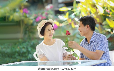 Asian middle-aged man gives a rose to his wife in valentine day