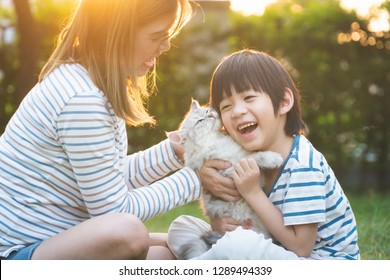 Asian mother and her son playing with cat in the park