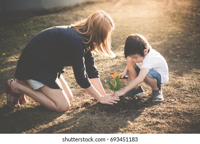 Asian mother and son planting young tree in black soil together