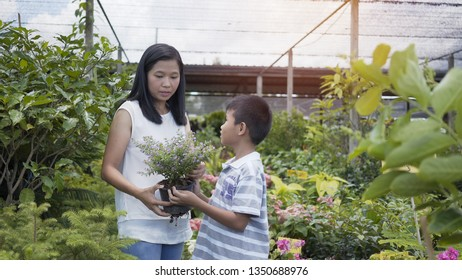 Asian mother and son take care of the trees in the garden.