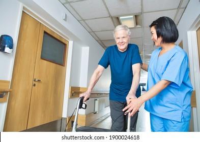 Asian nurse assisting elderly man with walker walking on the hospital floor.