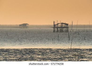 Asian Oyster farm in evening sunsent