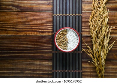 Asian paddy and rice (Thai Jasmine rice), rice in dark wooden bowl on the wood black bamboo background.