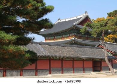 Asian palace in autumn season at South Korea