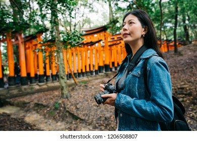 asian photographer standing in the forest near the Torii and looking up at the trees. lady lens man visiting temple in Kyoto in Japan. young girl hobby taking photo.