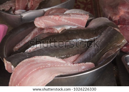 Asian catfish project you tell