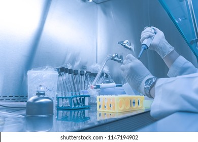 Asian scientist working in the lab,Doing experiment for product,The researchers analyzed to find the results of the experiment.