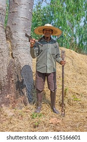 Asian Senior Farmer, portrait of old man of Thailand working at agriculture