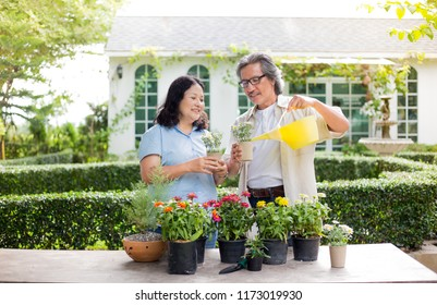 asian senior female and asian senior male care plant and watering in the garden, retirement activity, family time