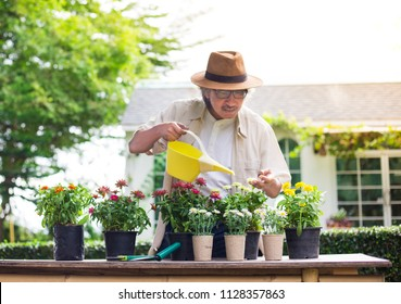 asian senior man holding watering and care plant in his garden, retirement activity