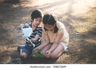 Asian sibling watering young tree on summer day