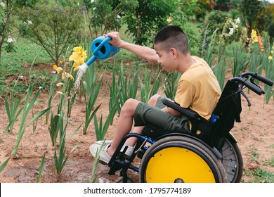 Asian special child on wheelchair watering the plants in flower garden,Daily activities happiness with family time in the home,Lifestyle in the education age and happy disabled kid concept.
