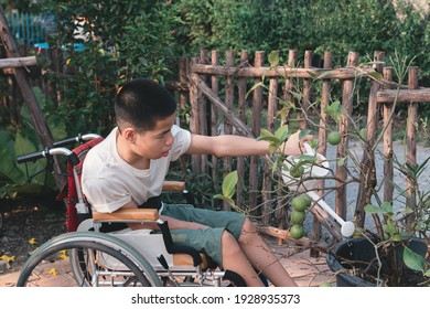 Asian special child on wheelchair watering the plants, Development activities and relationships with family time in the house,Lifestyle in education age and happy disabled kid concept.