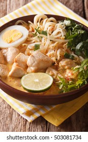 Asian thick soup with chicken, egg, rice noodles, bean sprouts and coriander in a bowl close-up on the table. vertical