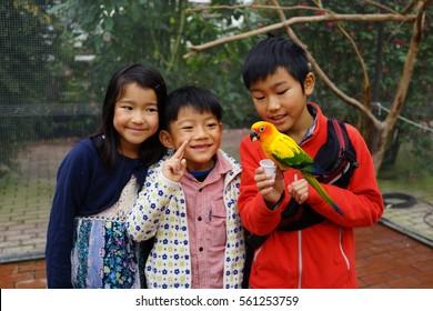 asian three kids boy and girl play with lorikeet love birds