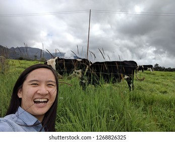 an asian tourist taking a selfie in front of cows in a dairy milking farm
