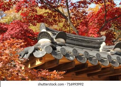 Asian traditional oriental roof in Autumn season