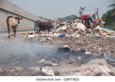 Asian trash disaster