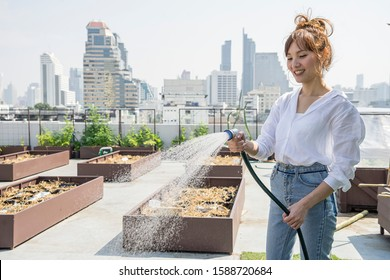 Asian woman, the farm owner, holding a faucet to water the vegetable plot on the rooftop.Freelance concept.