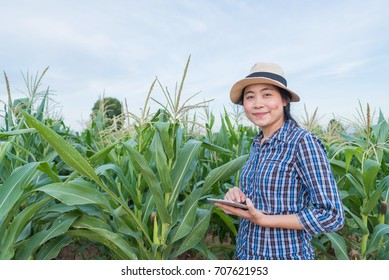 Asian woman farmer agriculture in corn field with digital tablet - smiling young attractive female success in agricultural small business farming