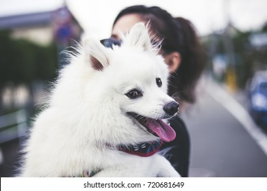 Asian woman holding a dog