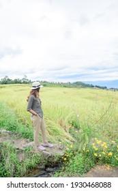 Asian Woman with Pa Bong Piang Rice Terraces at Chiang Mai Province, Thailand.