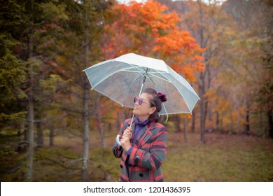 asian woman with raining umbrella standing in colorful of leaves  color change season in hokkaido japan