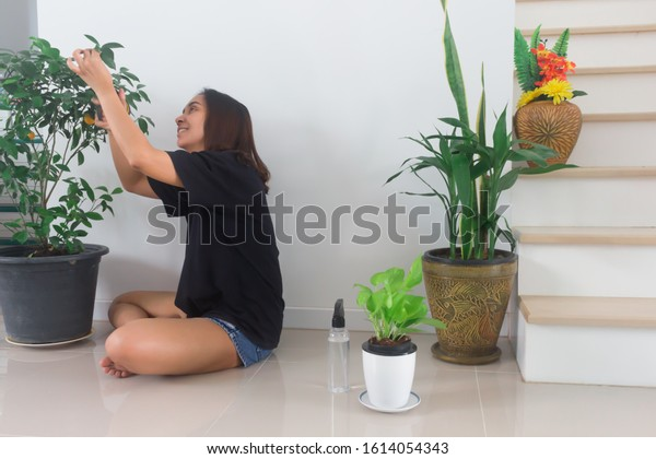 An Asian woman sitting Look after the house plants. Holiday activities, soft focus photos