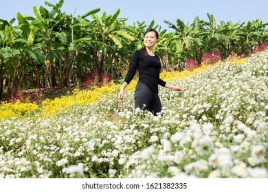 Asian woman standing soulful atmosphere in Chrysanthemum field