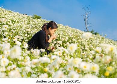 Asian woman standing and throwing flower soulful atmosphere in Chrysanthemum field