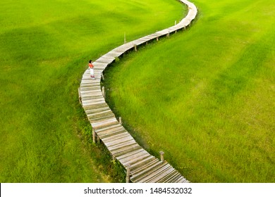 Asian woman traveler walking at white wooden bridge in rice fields.