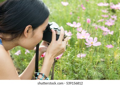Asian woman using a camera photographing in the flower garden