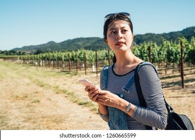 Asian woman in a vineyard with smiling cellphone after checking her grapes traceability and growing for the production of Italian wine. Concept of agriculture wine drinks bio nature and technology.