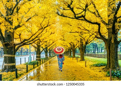 Asian woman wearing japanese traditional kimono at row of yellow ginkgo tree in autumn. Autumn park in Tokyo, Japan.