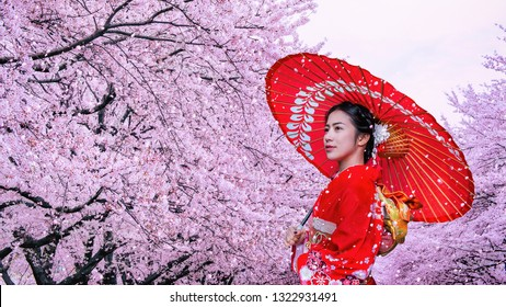 Asian woman wearing japanese traditional kimono and cherry blossom in spring, Japan.